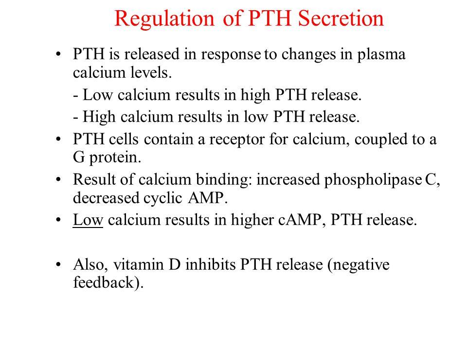Regulation of PTH Secretion