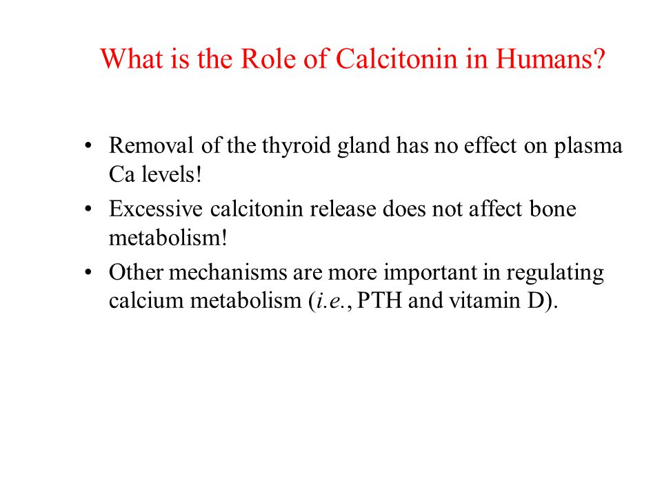 What is the Role of Calcitonin in Humans
