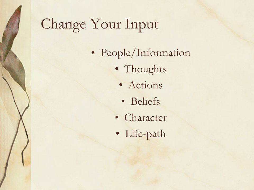 Change Your Input People/Information Thoughts Actions Beliefs