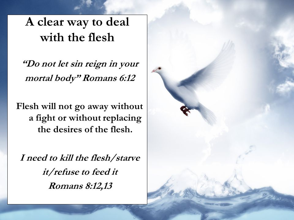 Do not let sin reign in your I need to kill the flesh/starve