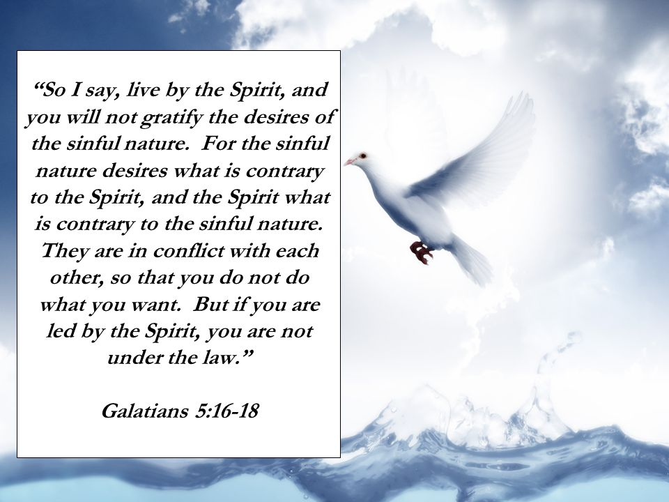 So I say, live by the Spirit, and you will not gratify the desires of