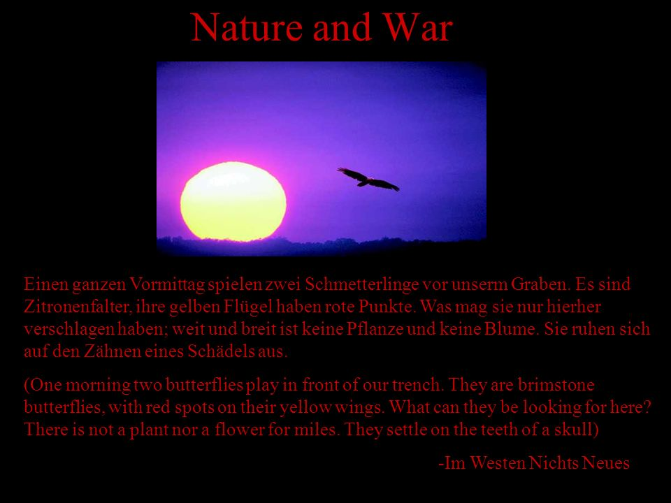Nature and War