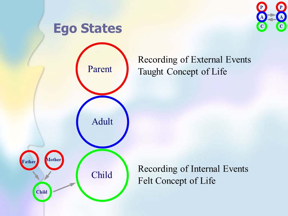 Parent Recording of External Events Taught Concept of Life Adult