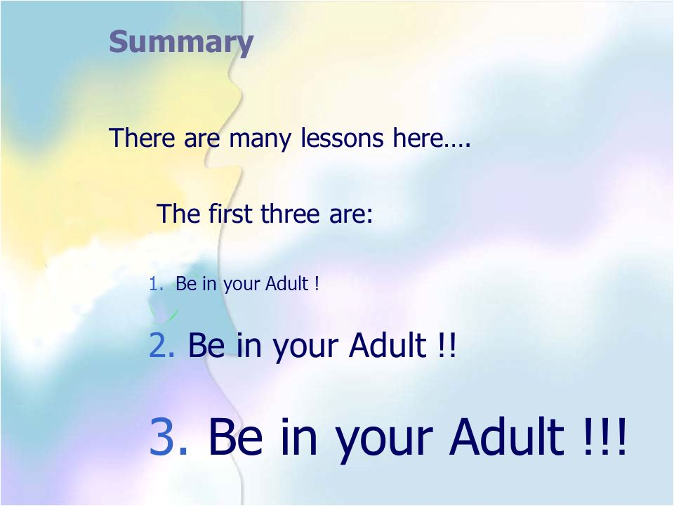 Summary 3. Be in your Adult !!! There are many lessons here….
