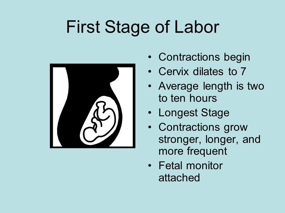 First Stage of Labor Contractions begin Cervix dilates to 7