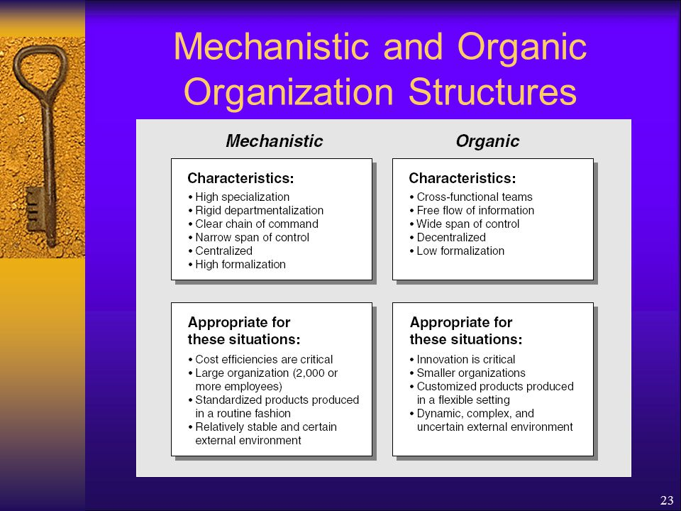 Mechanistic and Organic Organization Structures