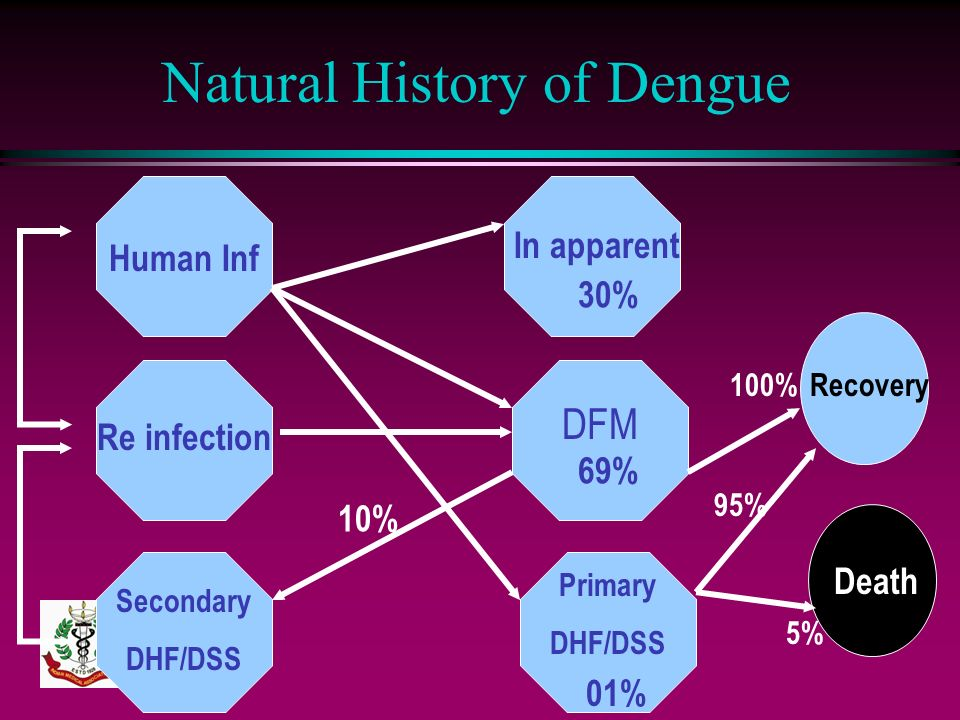 Natural History of Dengue