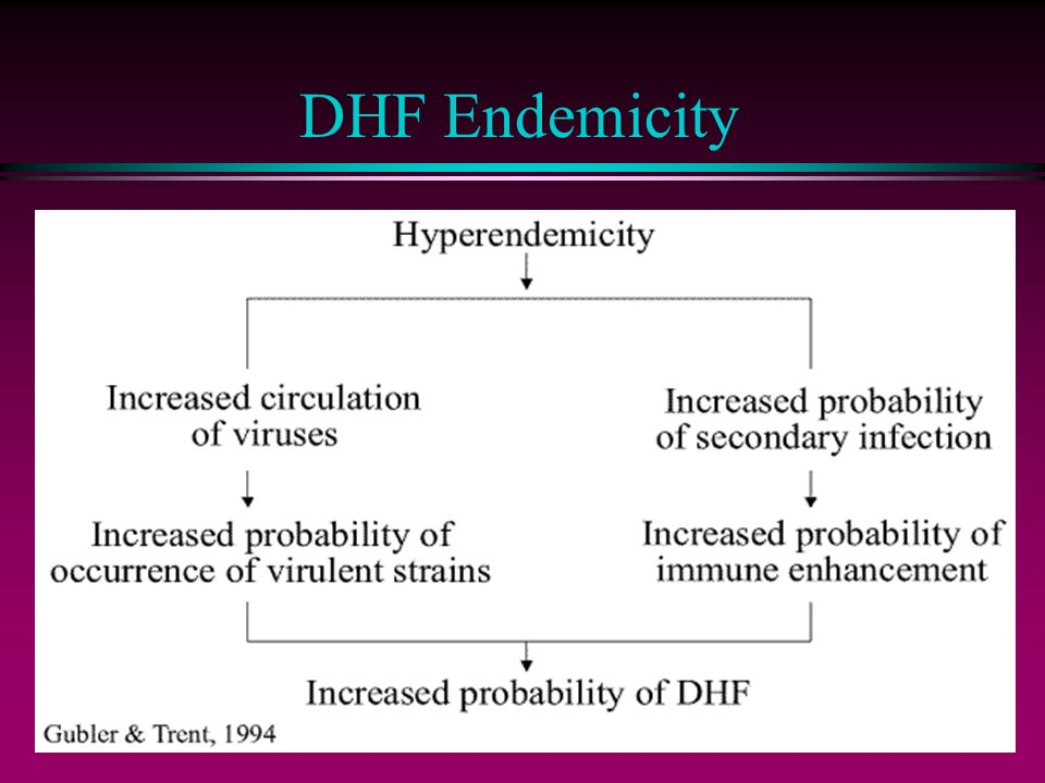 DHF Endemicity