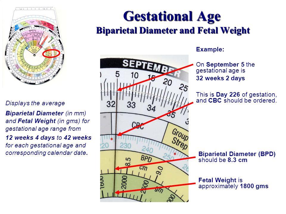 Gestational Age Biparietal Diameter and Fetal Weight
