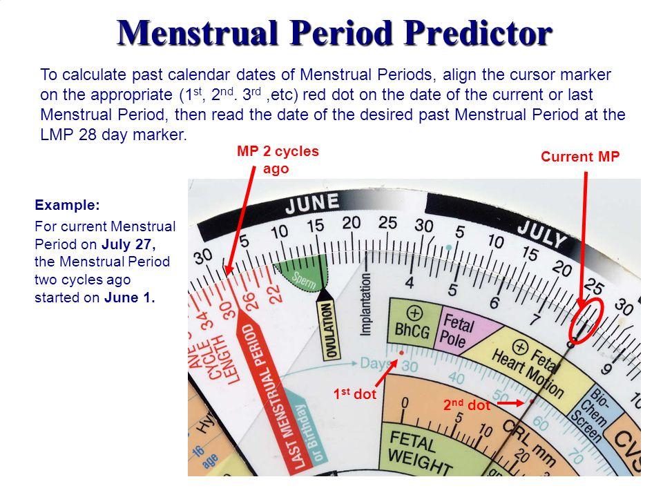 Menstrual Period Predictor