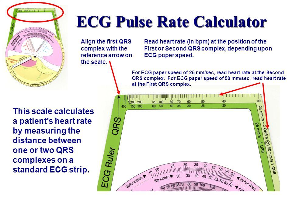 ECG Pulse Rate Calculator