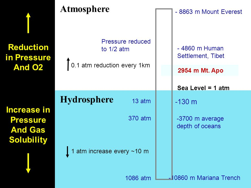 Atmosphere Hydrosphere Reduction in Pressure And O2