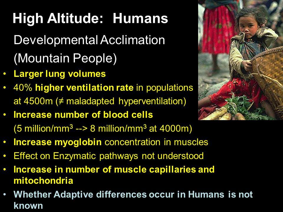 High Altitude: Humans Developmental Acclimation (Mountain People)
