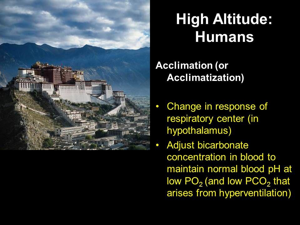 High Altitude: Humans Acclimation (or Acclimatization)