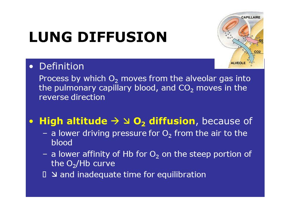 LUNG DIFFUSION Definition High altitude   O2 diffusion, because of