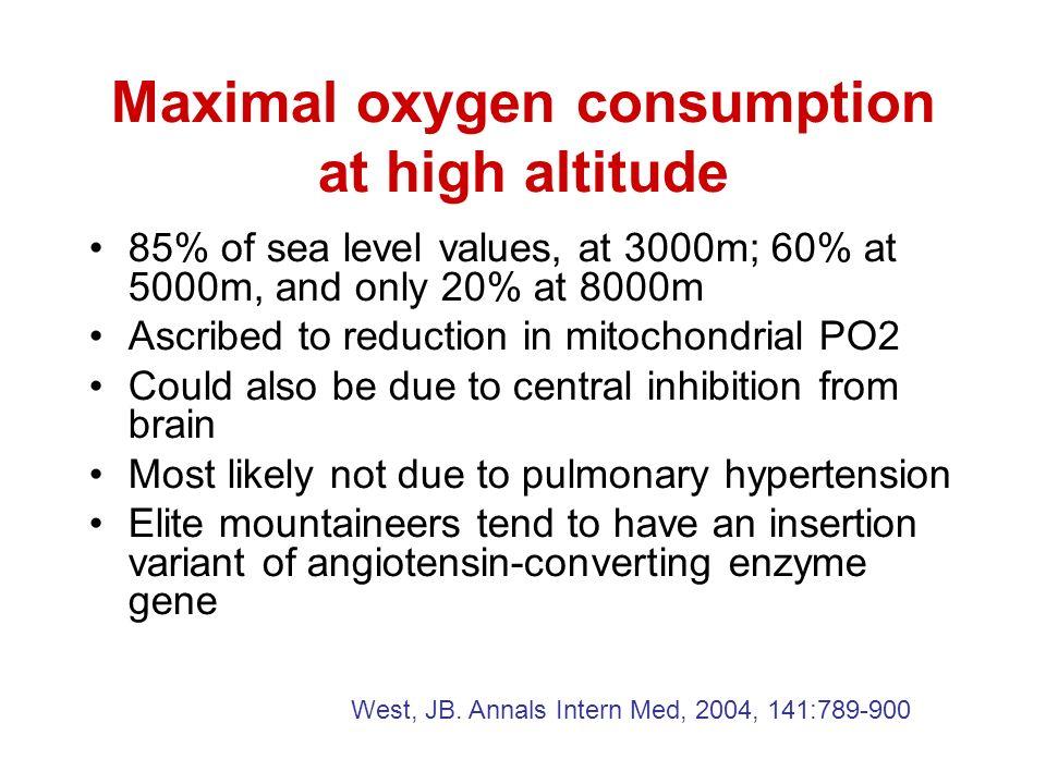 Maximal oxygen consumption at high altitude