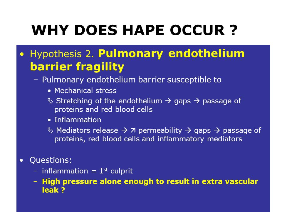 WHY DOES HAPE OCCUR Hypothesis 2. Pulmonary endothelium barrier fragility. Pulmonary endothelium barrier susceptible to.