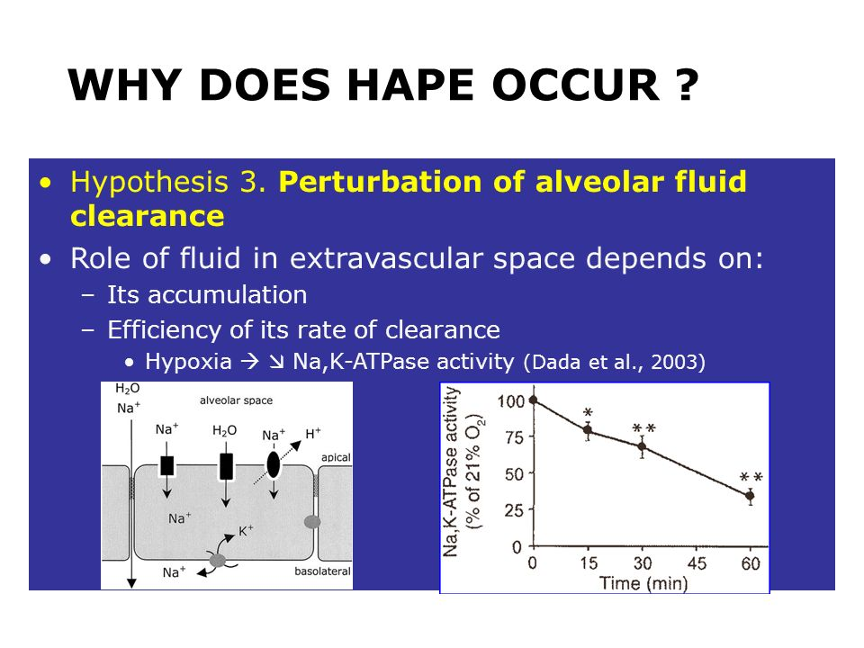WHY DOES HAPE OCCUR Hypothesis 3. Perturbation of alveolar fluid clearance. Role of fluid in extravascular space depends on: