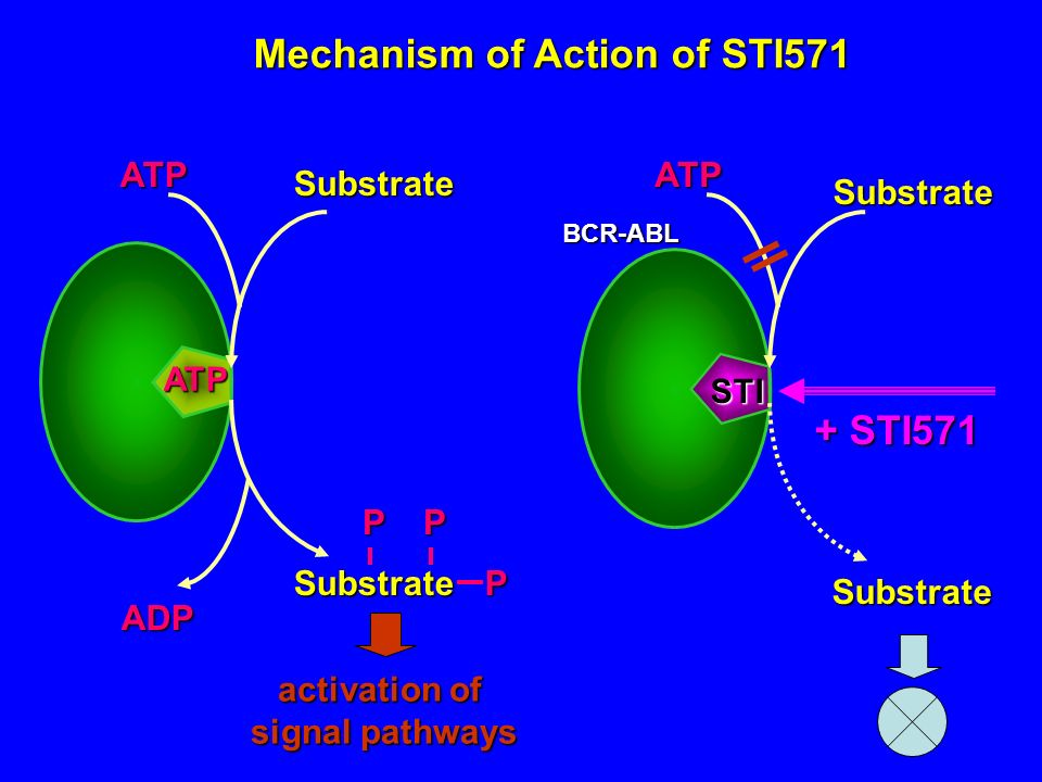 Mechanism of Action of STI571