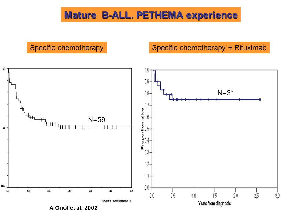Mature B-ALL. PETHEMA experience