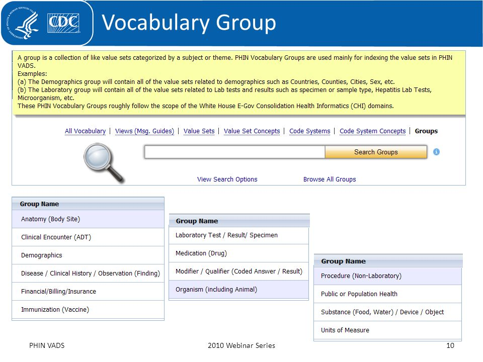 Vocabulary Group PHIN VADS 2010 Webinar Series