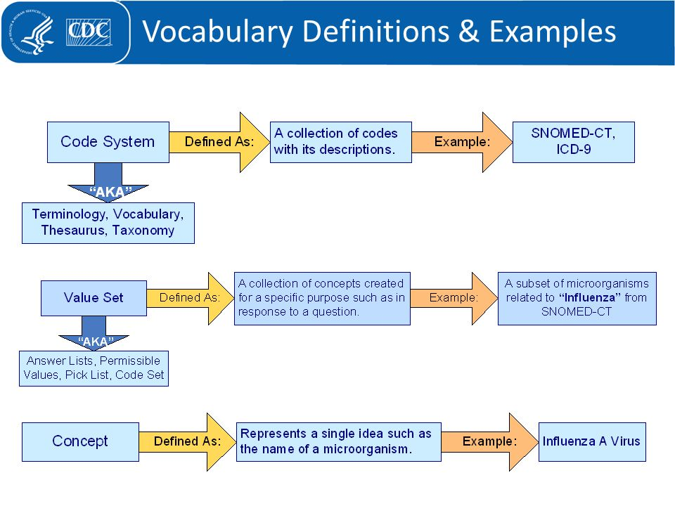 Vocabulary Definitions & Examples