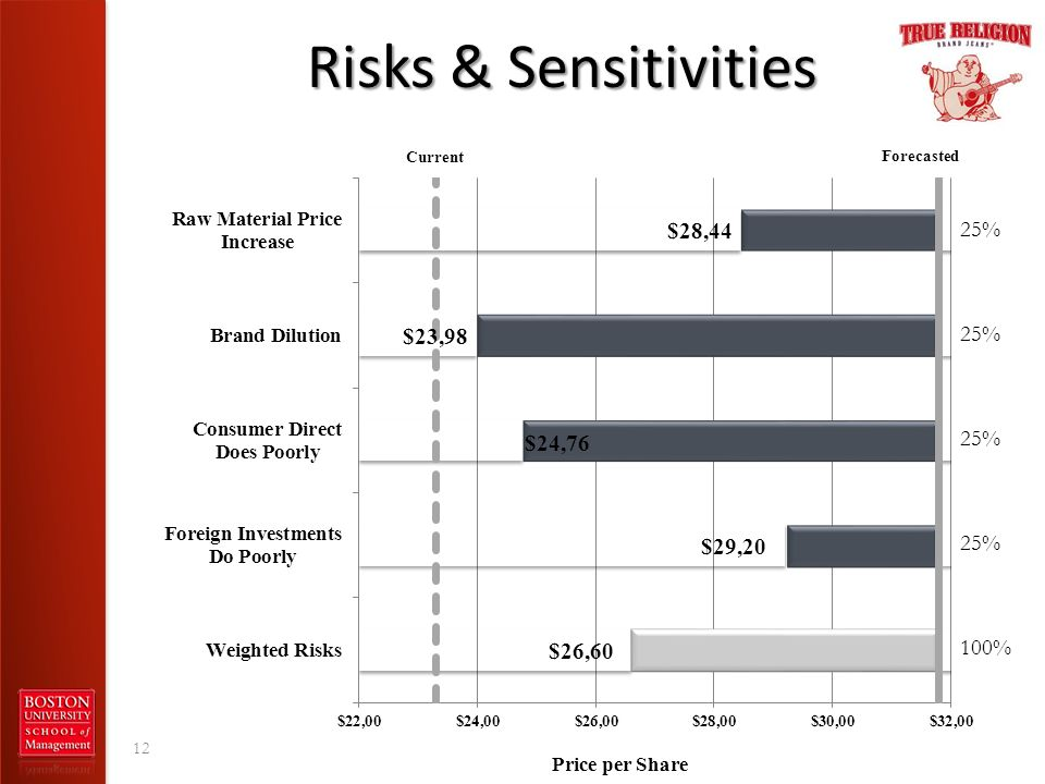 Risks & Sensitivities 25% 25% 25% 25% 100%