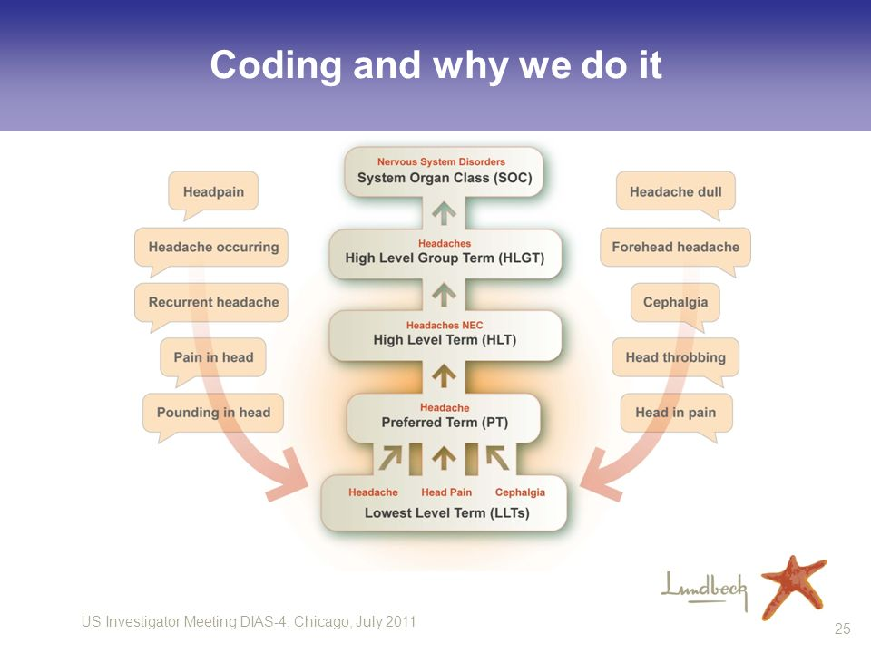 Coding and why we do it 25
