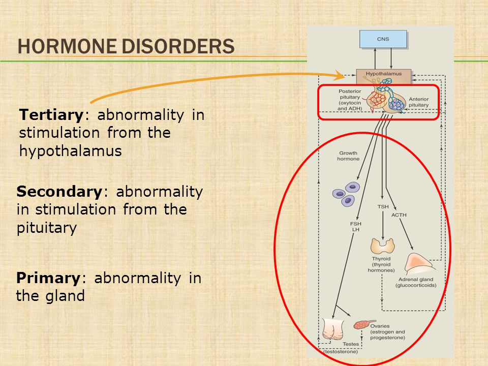 Hormone Disorders Tertiary: abnormality in stimulation from the hypothalamus. Secondary: abnormality in stimulation from the pituitary.