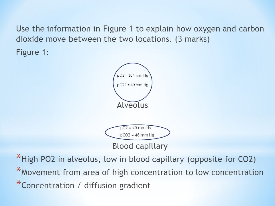 High PO2 in alveolus, low in blood capillary (opposite for CO2)