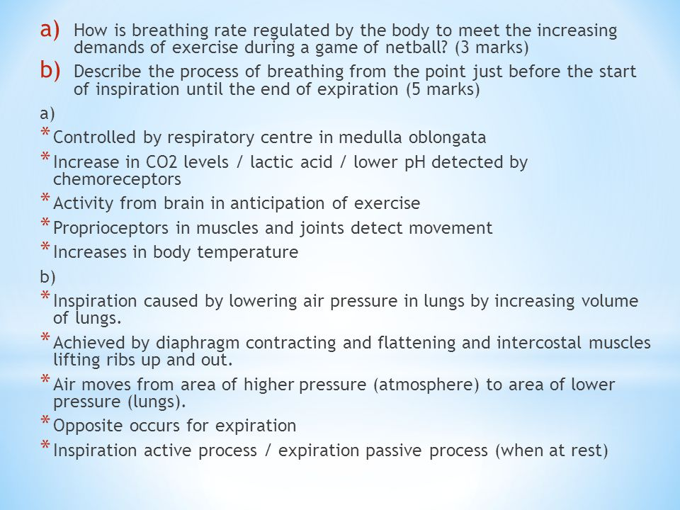 How is breathing rate regulated by the body to meet the increasing demands of exercise during a game of netball (3 marks)