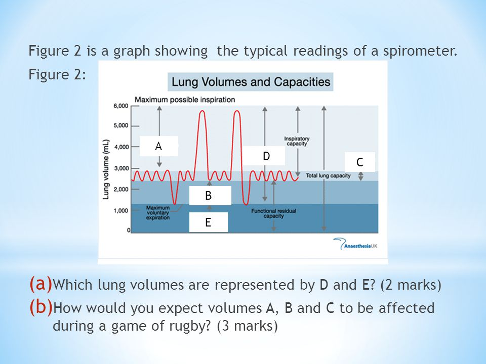 Figure 2 is a graph showing the typical readings of a spirometer.