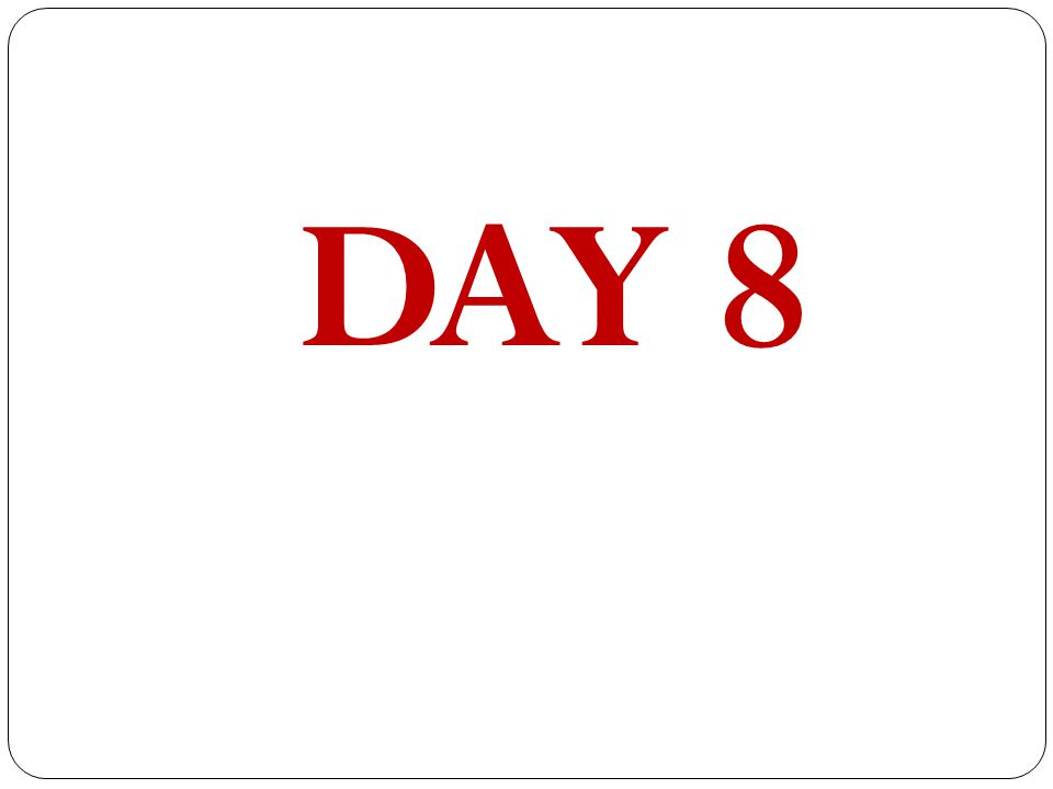 DAY 8