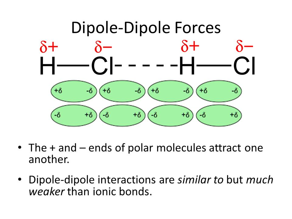 Dipole-Dipole Forces The + and – ends of polar molecules attract one another.