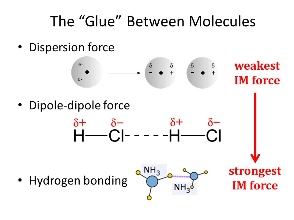 The Glue Between Molecules