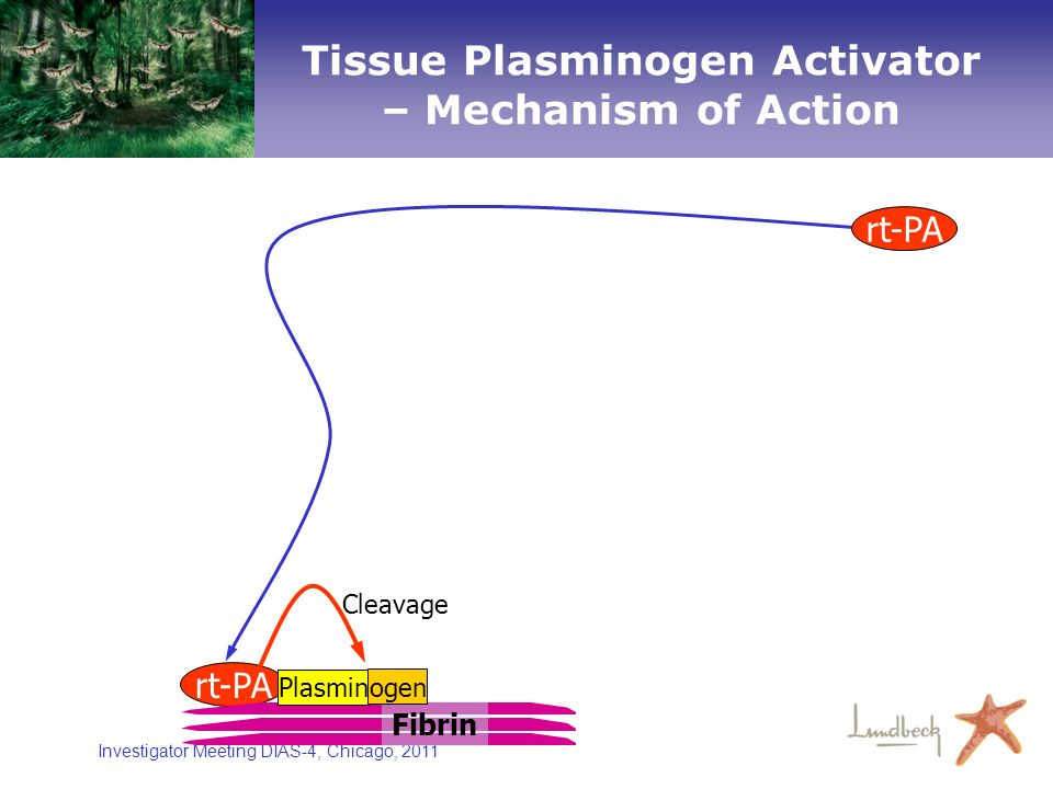 Tissue Plasminogen Activator – Mechanism of Action