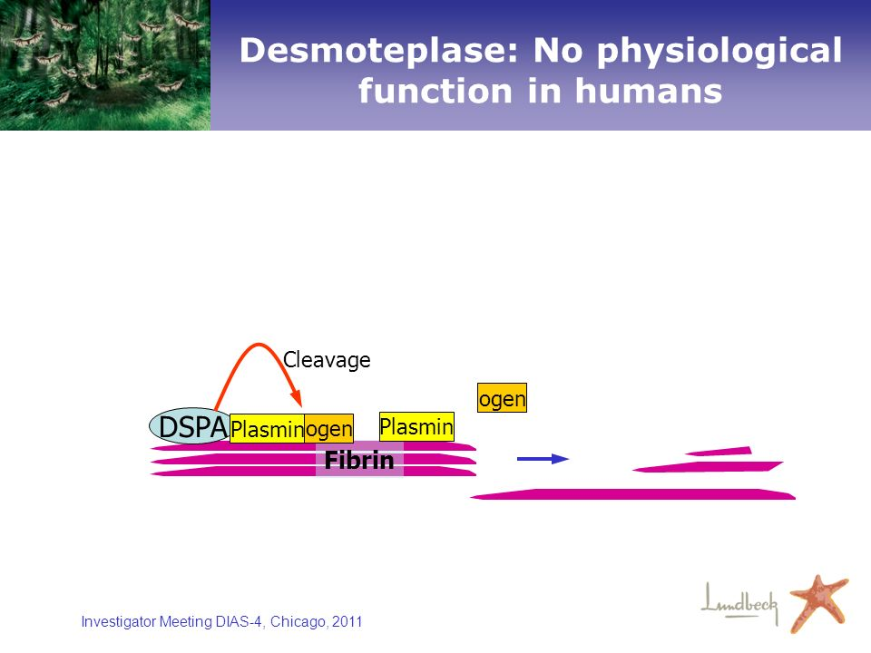 Desmoteplase: No physiological function in humans