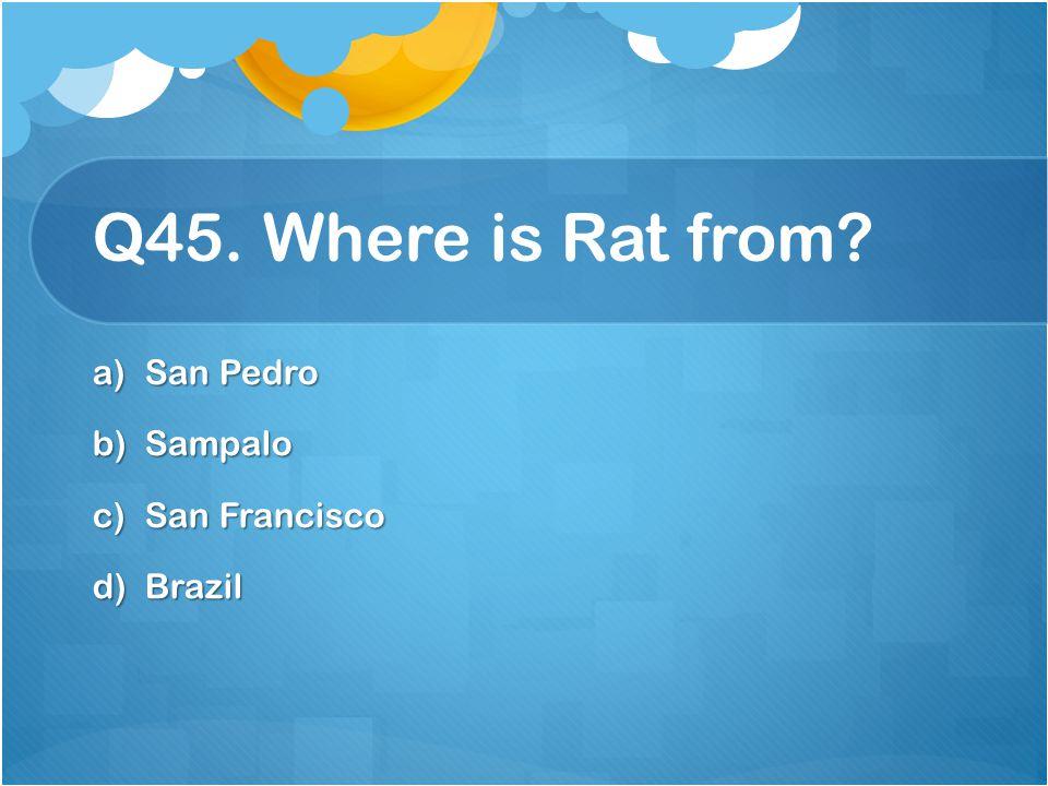 Q45. Where is Rat from San Pedro Sampalo San Francisco Brazil