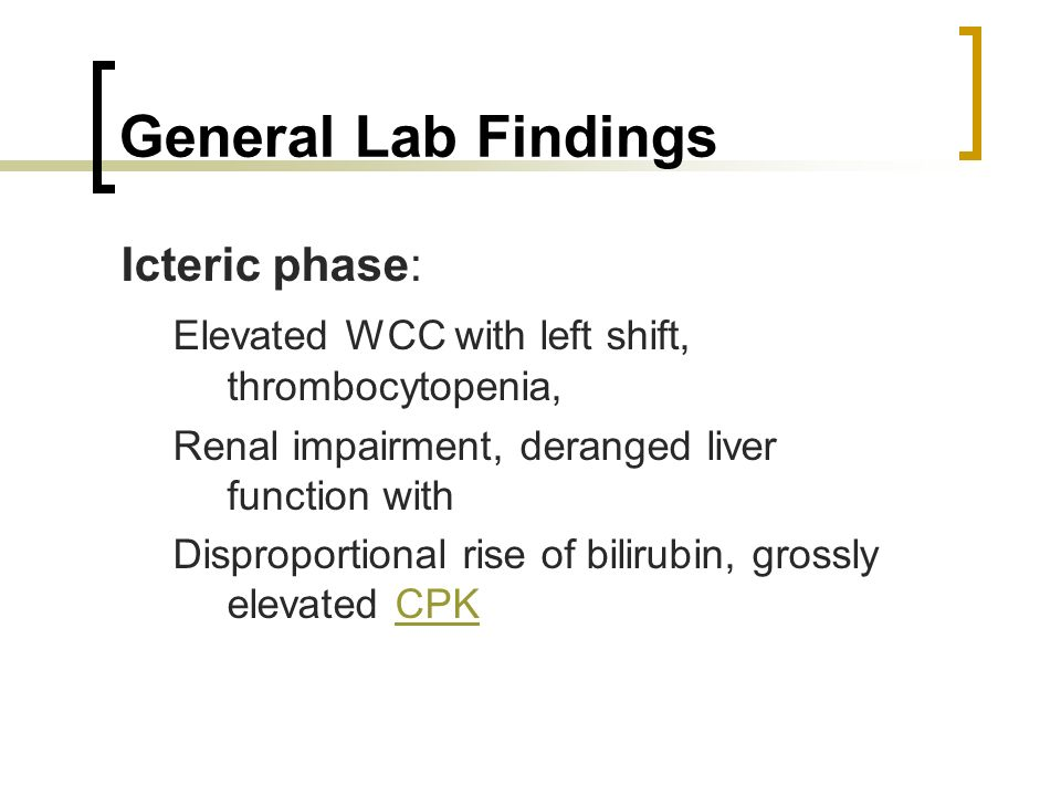 General Lab Findings Icteric phase: