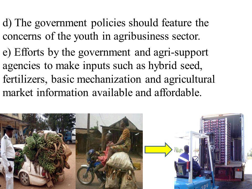 d) The government policies should feature the concerns of the youth in agribusiness sector.