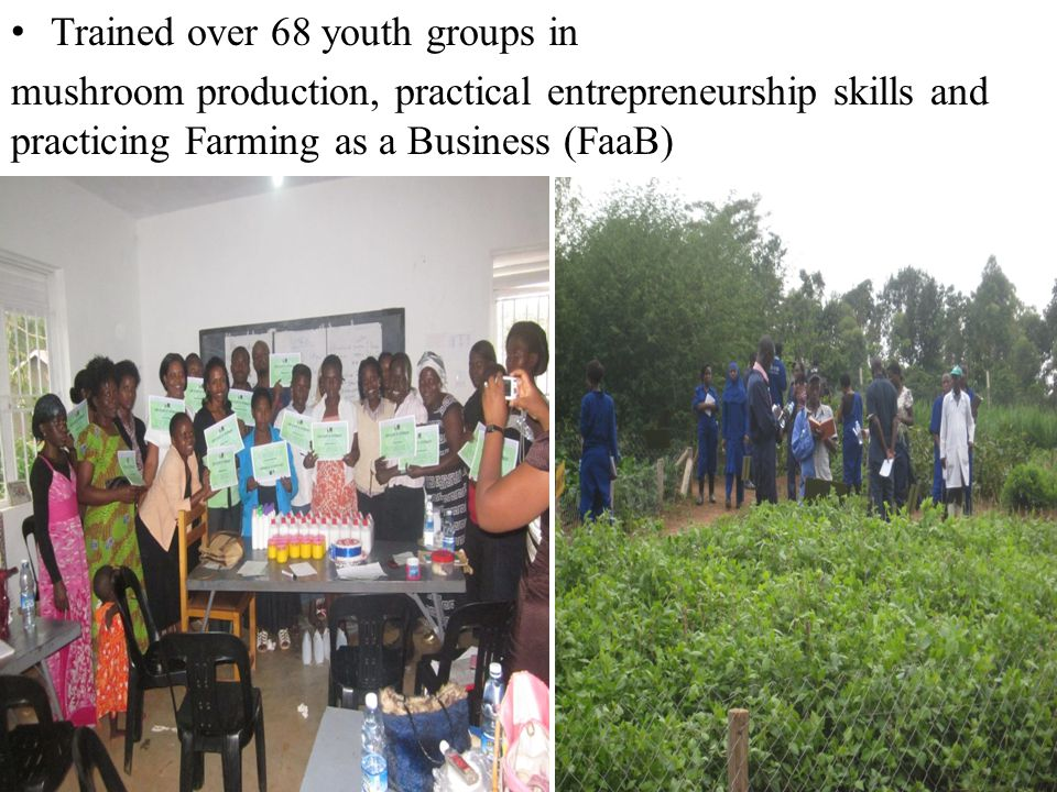 Trained over 68 youth groups in
