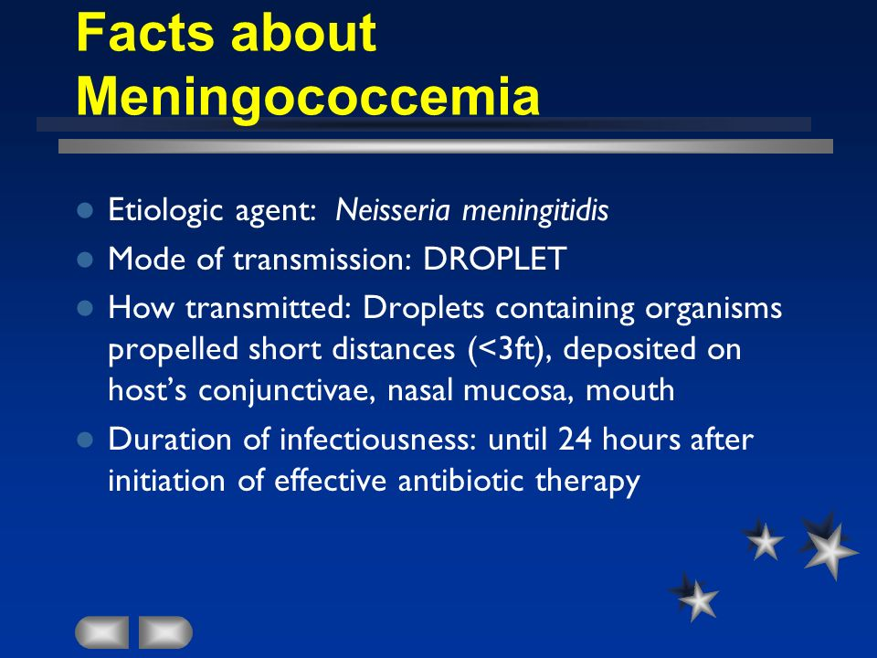 Facts about Meningococcemia