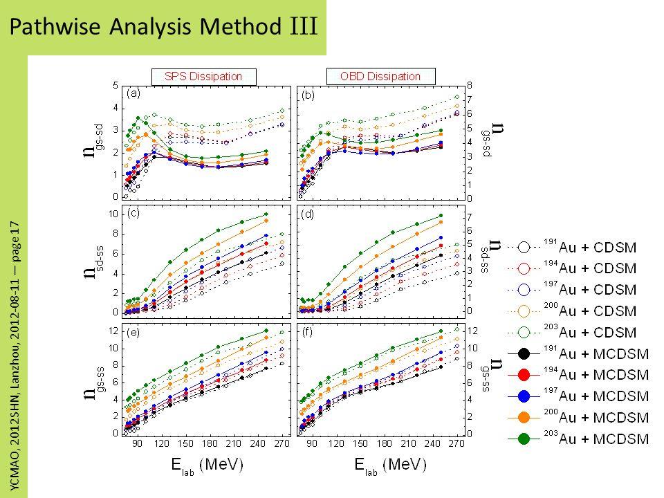 Pathwise Analysis Method III