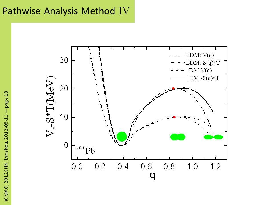 Pathwise Analysis Method IV