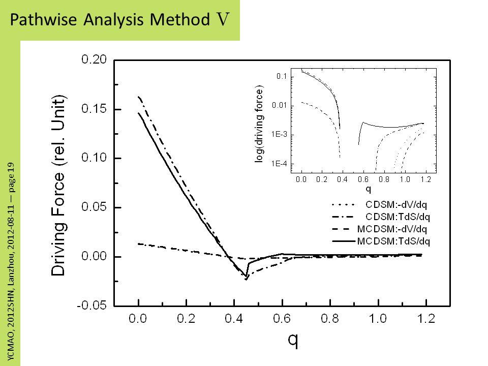 Pathwise Analysis Method V