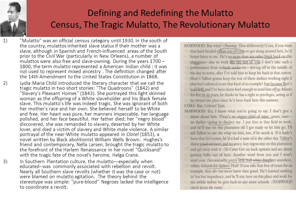 Defining and Redefining the Mulatto Census, The Tragic Mulatto, The Revolutionary Mulatto