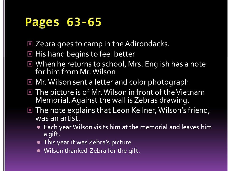 Pages 63-65 Zebra goes to camp in the Adirondacks.
