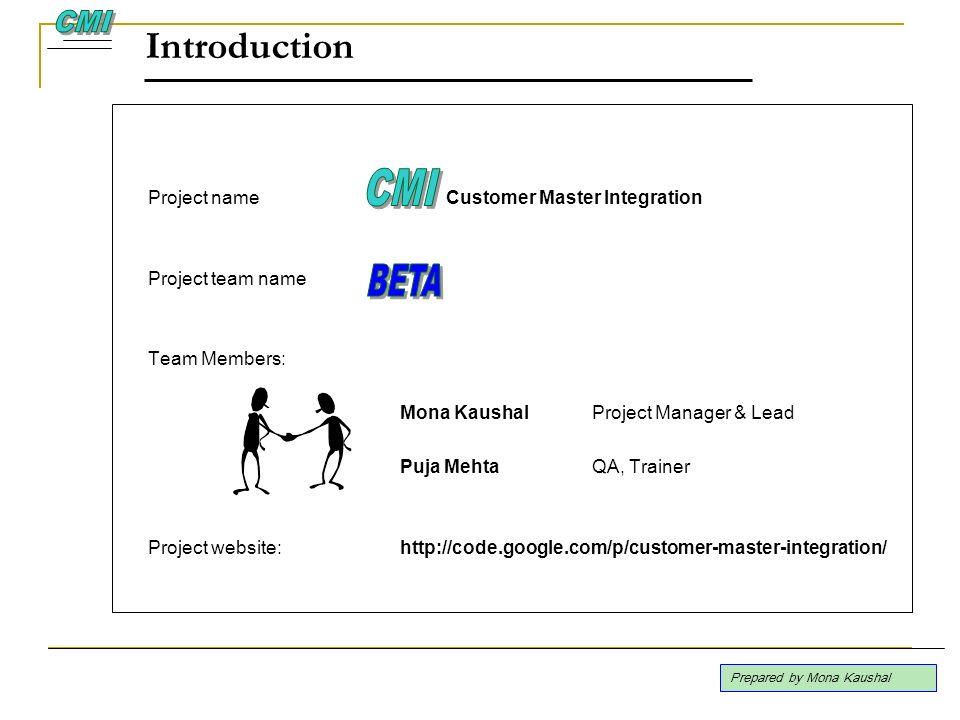 Introduction CMI CMI BETA Project name Customer Master Integration