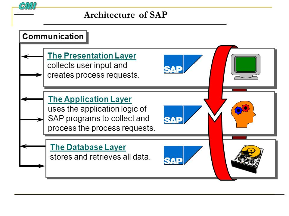 Architecture of SAP CMI Communication The Presentation Layer