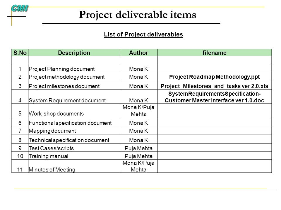 Project deliverable items